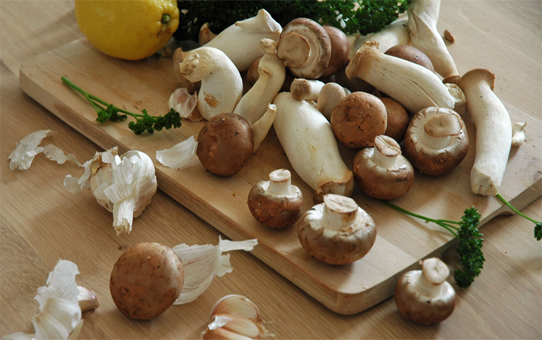 Энергетическая ценность грибов
