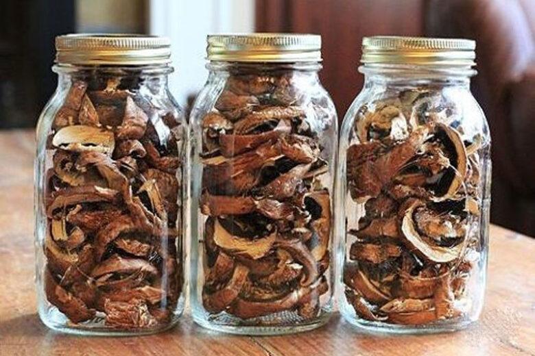 способы хранения грибов как хранить грибы в домашних условиях как сохранить грибы долго