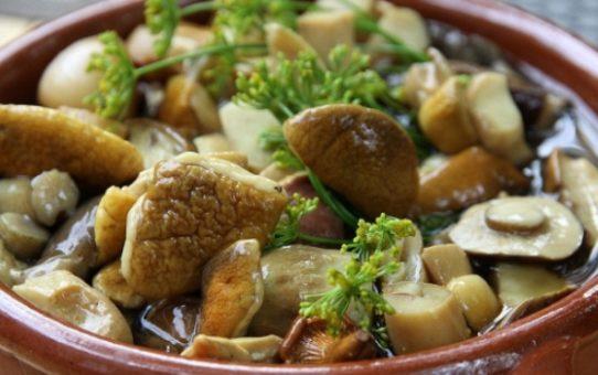 консервированные белые грибы