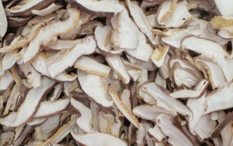 Срок хранения сушенных грибов