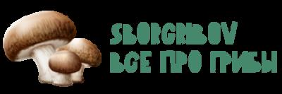 Сбор Грибов – Всё про грибы